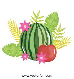 fresh watermelon and apple with floral decoration