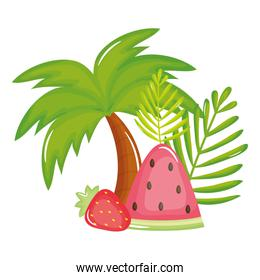 tree palm beach with watermelon and strawberry