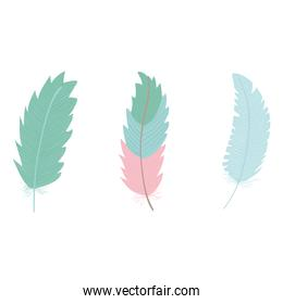 cute bohemian feathers set icons