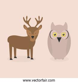 cute reindeer and owl bird woodland characters