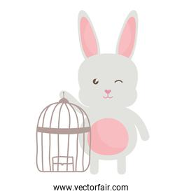cute little rabbit with cage bird