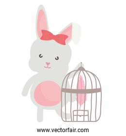 cute little rabbit with cage bird and feathers