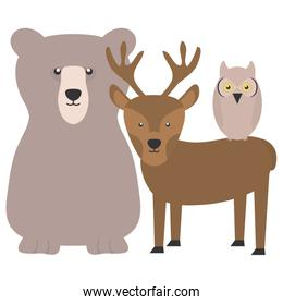 pretty bear grizzly with reindeer and owl