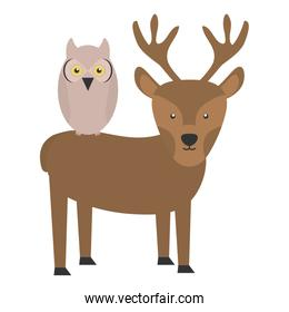 pretty reindeer and owl bird woodland characters