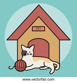 cute cat mascot in house with ball yarn
