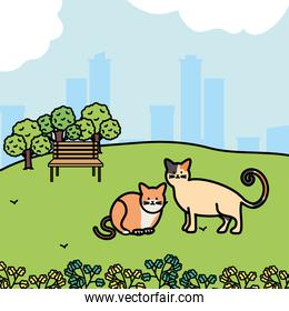cute cats mascots adorables in the park
