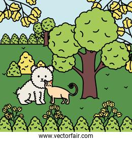 cute cat and dog mascots in the landscape