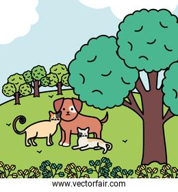 cute cats and dog mascots in the park