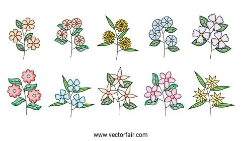 set of flowers and leafs garden icons