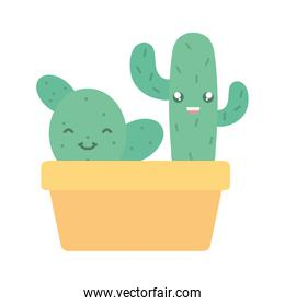 exotic cactus plants in square ceramic pot kawaii characters