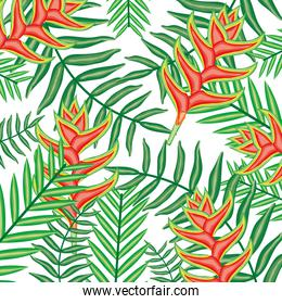tropical heliconias flowers and leafs plants pattern