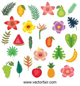 fresh fruits with flowers and leafs icons