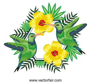 beautiful hummingbirds with tropical floral decoration