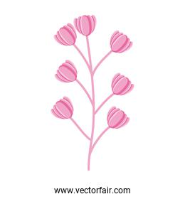 branch with flowers garden decorative icon