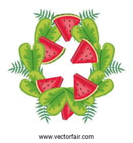 fresh watermelons fruits with leafs