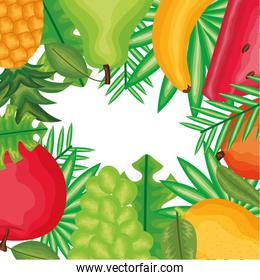 fresh and tropicals fruits frame