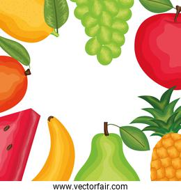 fresh and tropicals fruits frame over white