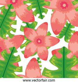 exotic and tropical flowers with leafs pattern