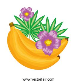 fresh banana fruit with floral decoration
