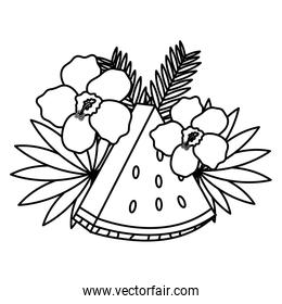 fresh watermelon fruit flowers and leafs decoration