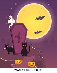 black cats coffin ghost and pumpkins trick or treat, happy halloween