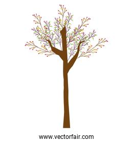 tree leaves branch nature image vector illustration