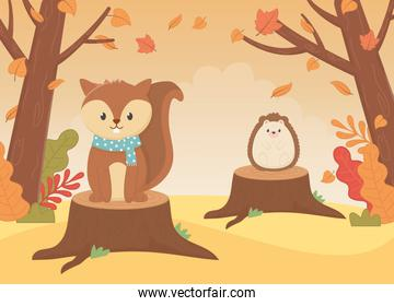 cute squirrel with scarf and hedgehog animal foliage hello autumn