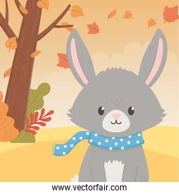 cute rabbit with dotted scarf tree animal foliage hello autumn