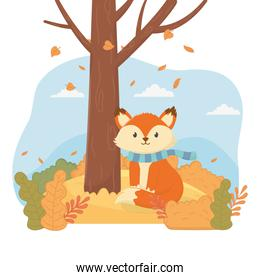 cute fox with scarf forest tree animal foliage hello autumn