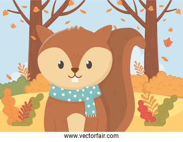 cute squirrel with scarf leaves animal foliage hello autumn