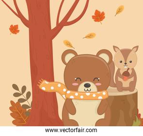 cute bear and squirrel with acorn foliage hello autumn