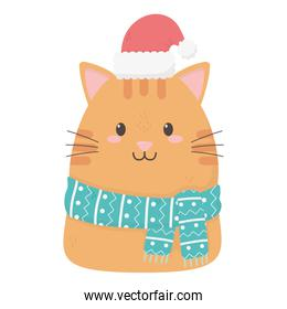 kitty  with scarf hat celebration merry christmas