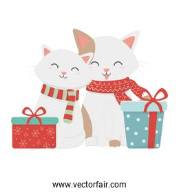 cute couple cat with gifts celebration merry christmas