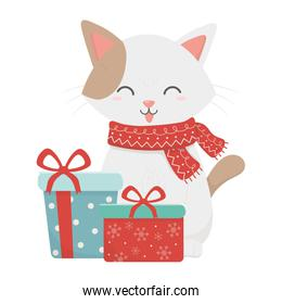 cat with gift boxes celebration merry christmas