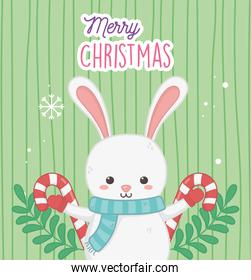 cute rabbit with candy canes and leaves merry christmas