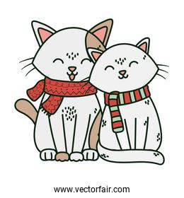 adorable cats with scarf over white
