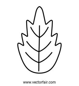 white background with leaf foliage thick line