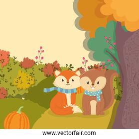 cute fox and squirrel with scarf and pumpkin hello autumn