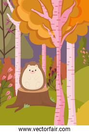 cute hedgehog on trunk forest hello autumn