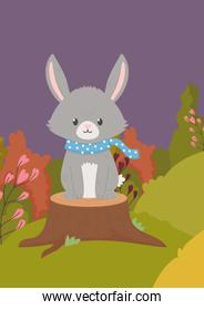 cute bunny with scarf on trunk field hello autumn