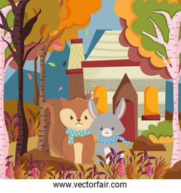 cute squirrel and rabbit cottage forest hello autumn