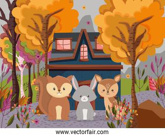 cute deer rabbit and squirrel cottage forest hello autumn