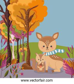pretty deer and squirrel with acorn hello autumn