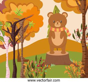 cute bear standing on trunk forest hello autumn