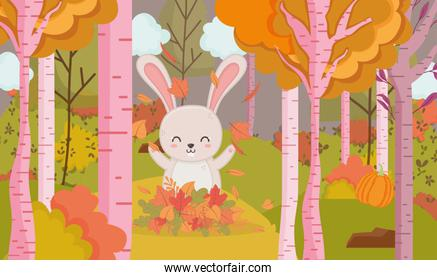 cute rabbit playing with leaves forest hello autumn