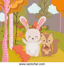 cute rabbit and squirel with acorn forest hello autumn