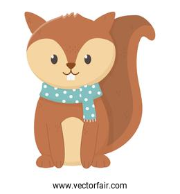cute squirrel with scarf autumn icon isolated