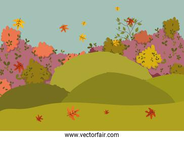autumn landscape falling leaves bush foliage natural