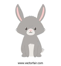 gray bunny sitting isolated icon