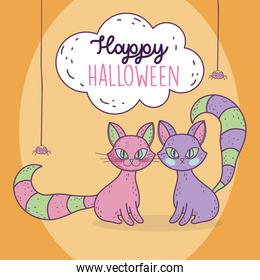 happy halloween celebration cats and hanging spiders